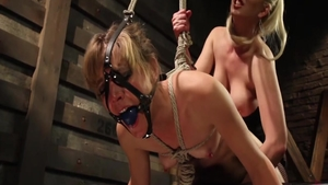 Hard pounding together with Cherry Torn and Mona Wales