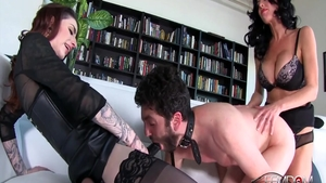 Glamour hotwife Abbey Brooks feels up to hardcore sex