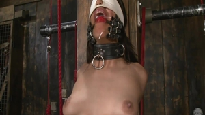 Bondage accompanied by very hot stepmom Lyla Storm